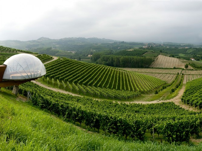 ceretto winery
